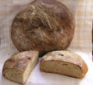 Free-form round loaf of bread