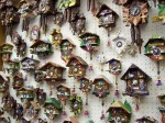 Wall display of cuckoo clocks